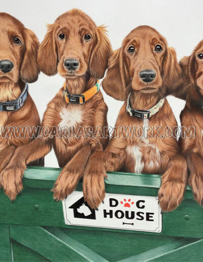 Buster,-Céline,-Lucca,-Megan,-Irish-Setters,-14-x-17-inches,-A3+