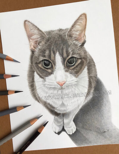 Maddy,-Tabby-Cat,-7-x-9-inches,-A5+