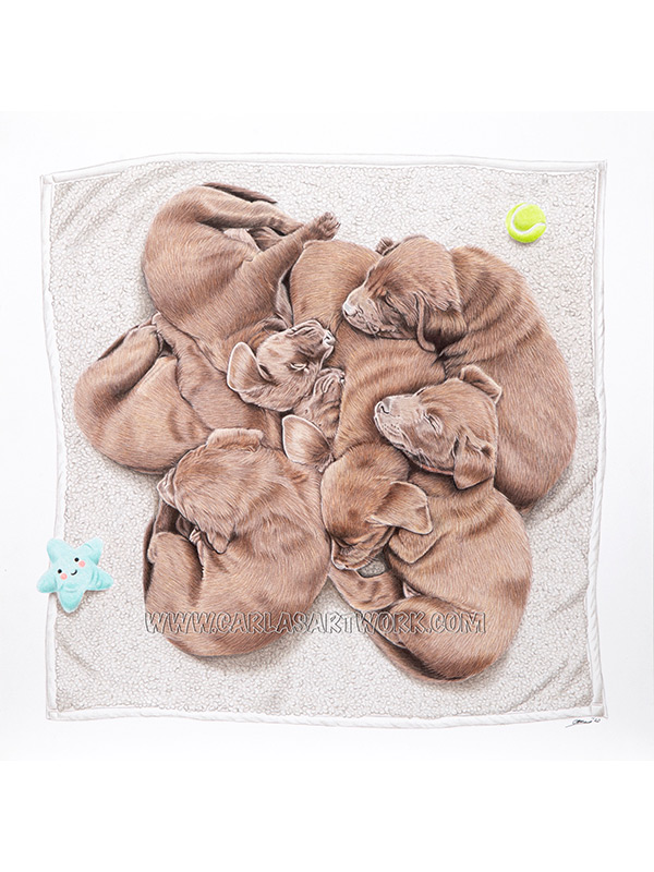Puppy Cuddle Puddle